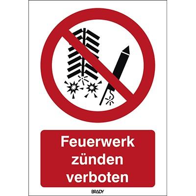 196845 - ISO-Sicherheitsschild–Feuerwerk verboten